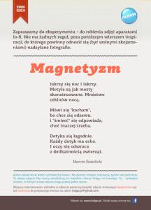wp_magnetyzm